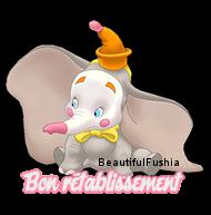 6 Forums - Dumbo