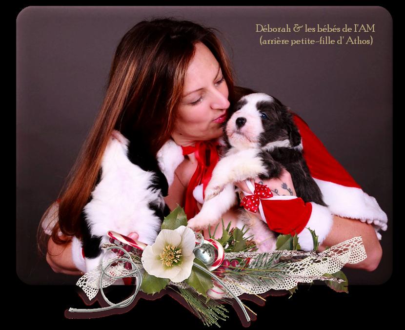 Joyeux Noël avec les bébés d' Iam * arrière petite-fille d' Athos*