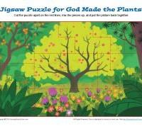 Jigsaw Puzzle - God Made the Plants