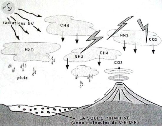 Origines de la vie : la soupe primitive