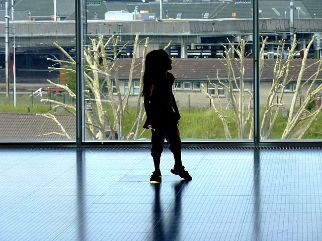 Galeries du Centre Pompidou-Metz 15 Marc de Metz 29 02 2013
