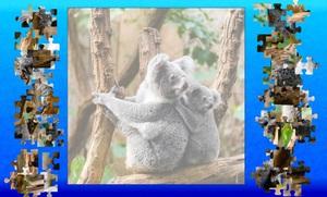 Jouer à Koala puzzle