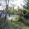 jardin-marie-304825.jpg