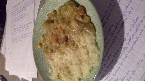 Mon curry japonais fait au pif 100% hasard xD