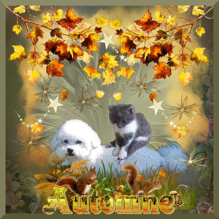 * Bel automne avec Indy et Ugo *