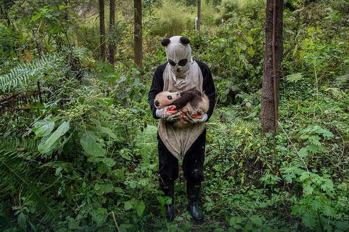 Photos nominés pour les Sony World Photography Awards 2017 à couper le souffle