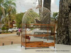 suriname/ place de l'Indépendance/ les Picolets