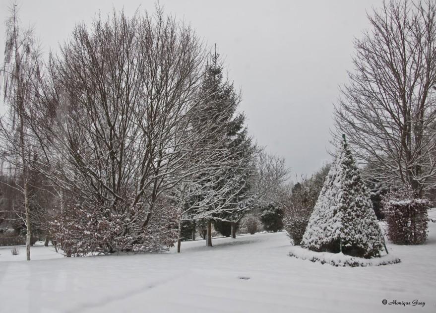 neige-terrain-2138.jpg