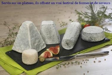 Le club des cinq fromage région Centre