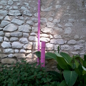 Du Bambou peint en rose pour une touche de couleur au milieu des végétaux verts