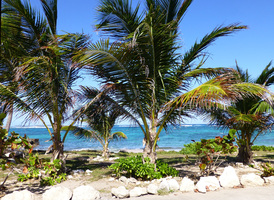 L'Ile de Saint-Martin avant Irma - page 3