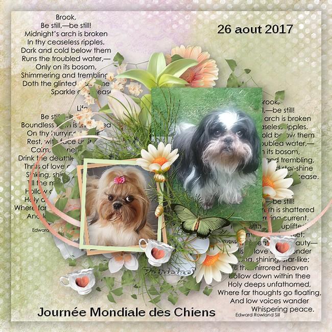deux chiens à l'honneur  futé Izolaina chienne de ma belle soeur