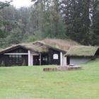 Norvège2 - Maisons en bois avec toit végétalisé (Septembre 2019)