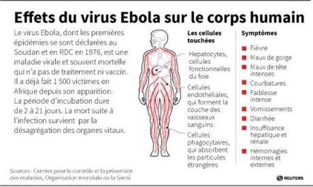 Histoire Moderne:  Virus Ébola