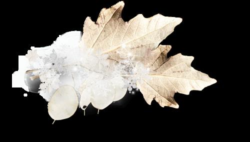 Elements,fioriture divers  Noël /  11