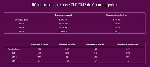 informatique - numérique - bilan d'une année de twittclasse - CM1/CM2