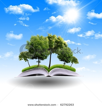 stock-photo-magic-book-with-the-lines-and-lights-with-green-tree-62792263