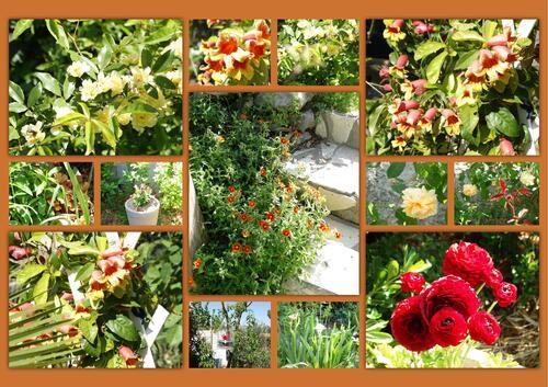 Avril au jardin