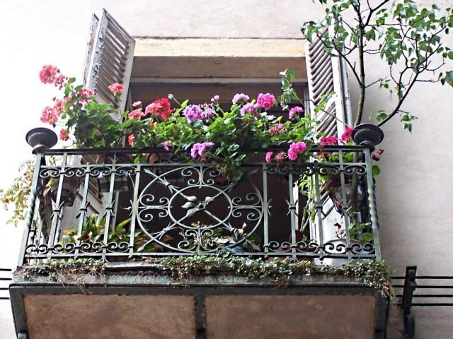 Photos de Metz 12 11 05 2010 - 2