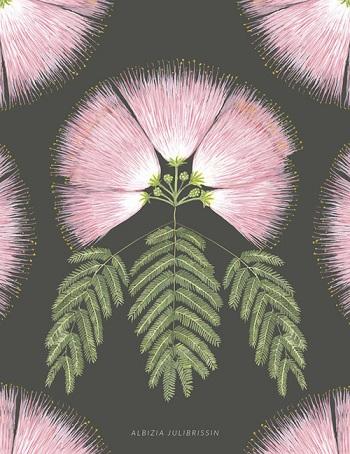 L'arbre à soie ...