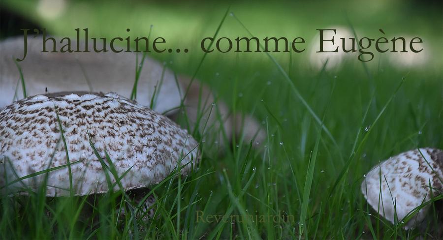J'hallucine... comme Eugène