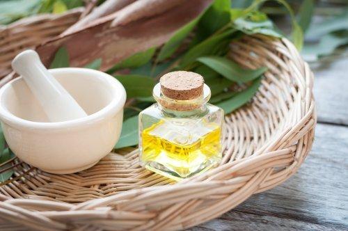 Eucalyptus, oignon et citron pour traiter la toux