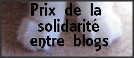 prix-solidarite-blog-copie-1.jpg
