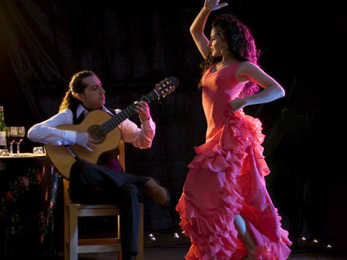 ÉRIC FERNANDEZ - Adios Andalucia, Album, Magic Gipsy. MUSIQUE VIDÉOS (Rubrique)