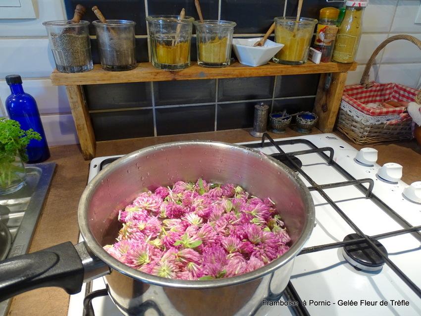 Gelée Fleurs de trèfle