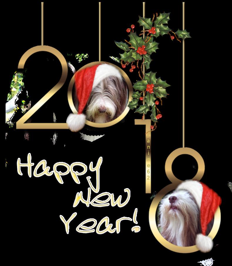 Bonne Année 2018 ♥ d' Athos & Cheyenne ♥