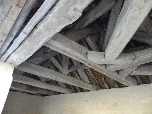 Une belle balade à Chaumont le bois et Vannaire, guidée par Anne Bouhélier
