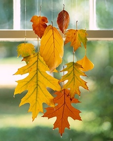 Hanging Leaves DIY: When dipped in wax, colorful leaves can be preserved through this season & beyond.