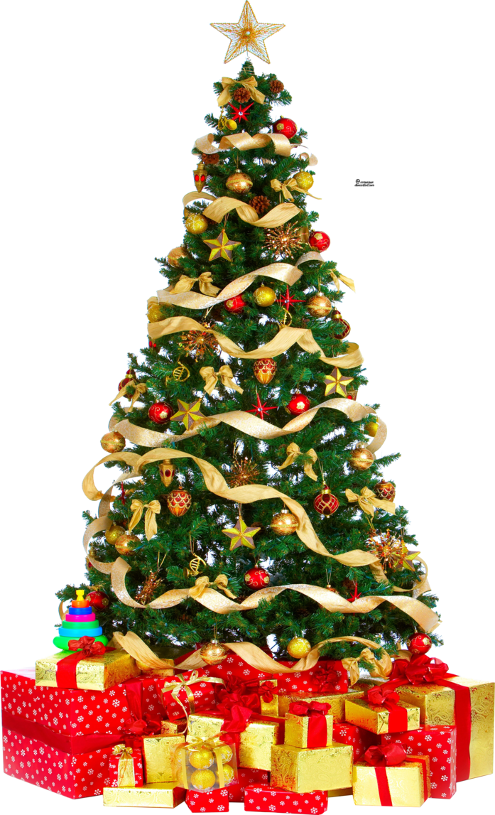Sapin de Noël (1)