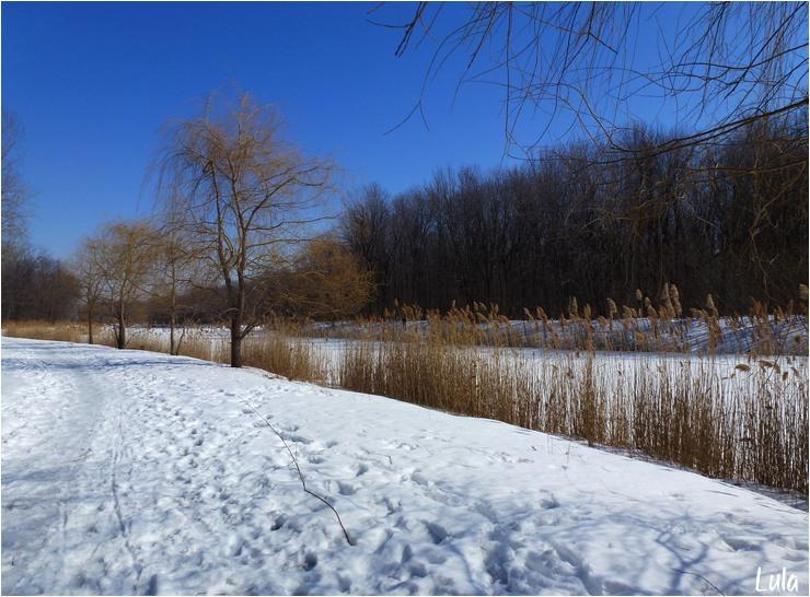 Le parc d'Angrignon au mois de mars