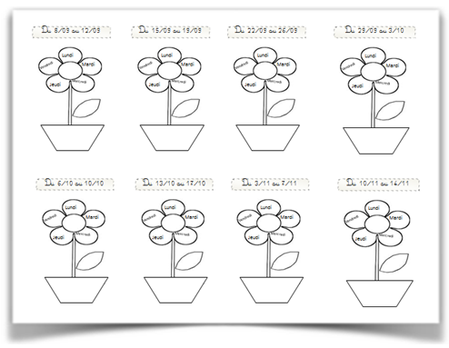 Fleur du comportement sur 5 jours