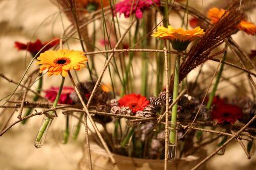 Féérie florale à Corroy-le-Grand 2018
