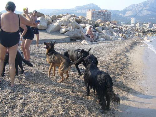 Feu d artifice Marseille 2013 et Cyssie a la plage