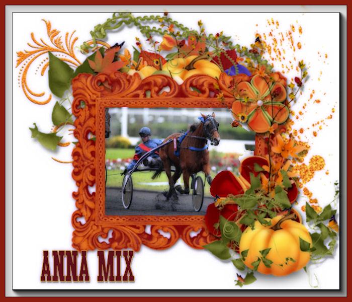 Anna Mix  (1)