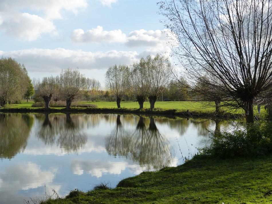 Autour d'Amiens, la nature ...