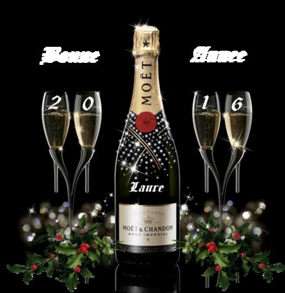 Bonne Année 2016 à vous tous et toutes