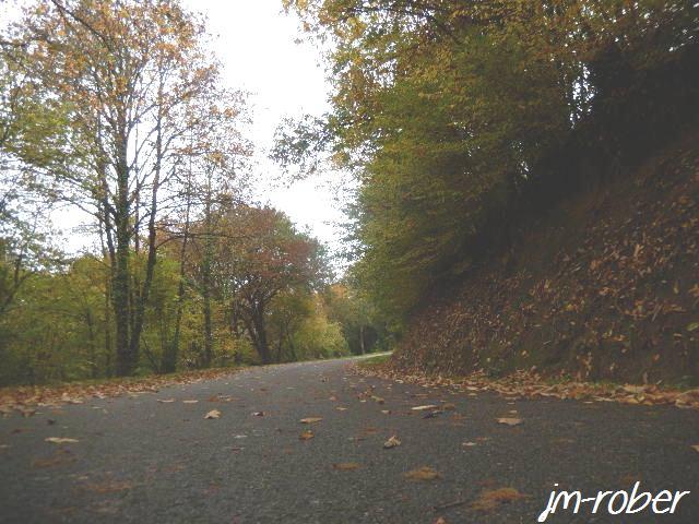 Cyclotourisme: 100000km à pédaler, suite à une nouvelle passion ou loisir