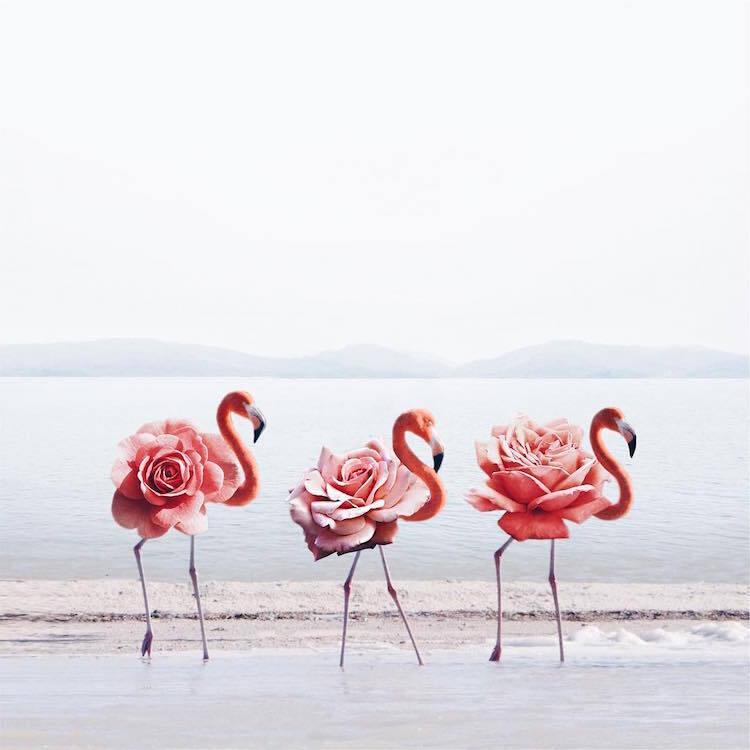 Les-magnifiques-images-surrealistes-de-Luisa-Azevedo-21 Les magnifiques images surréalistes de Luisa Azevedo