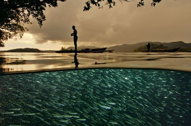 photo sous la surface de l'eau, photo aquatique incroyables