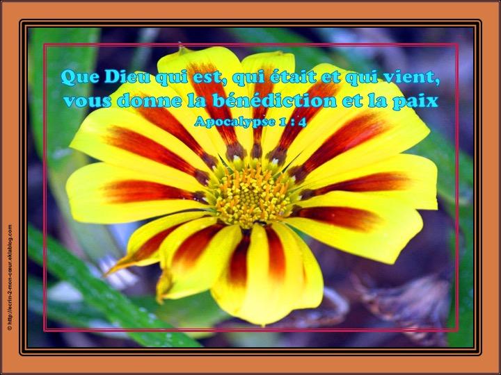 Que Dieu vous donne la bénédiction et la paix - Apocalypse 1 : 4