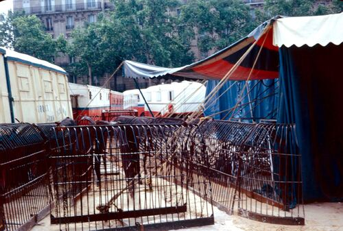 photos exceptionnelles du cirque Jean Richard place de Clichy à Paris en  juin 1973 ( archives Jean Claude Murat)