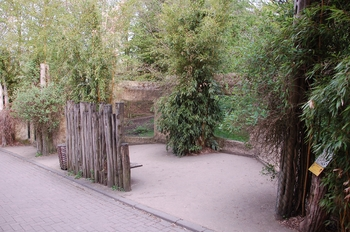 Zoo Osnabruck d50 2012 030