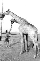 Vacances d'été 1971 : Vive la mer et les hommes et le ciel !
