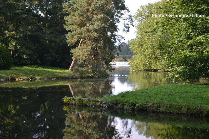 Promenade dans le Parc de Rambouillet