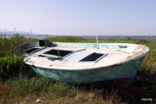 Quelques vieilles barques de pêche ...
