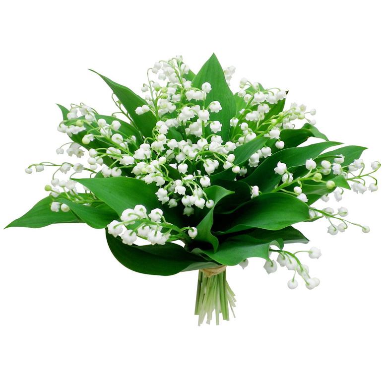 MARSEILLE - Mamiekéké et Cricri d' amour vous offre le muguet du 1er Mai .